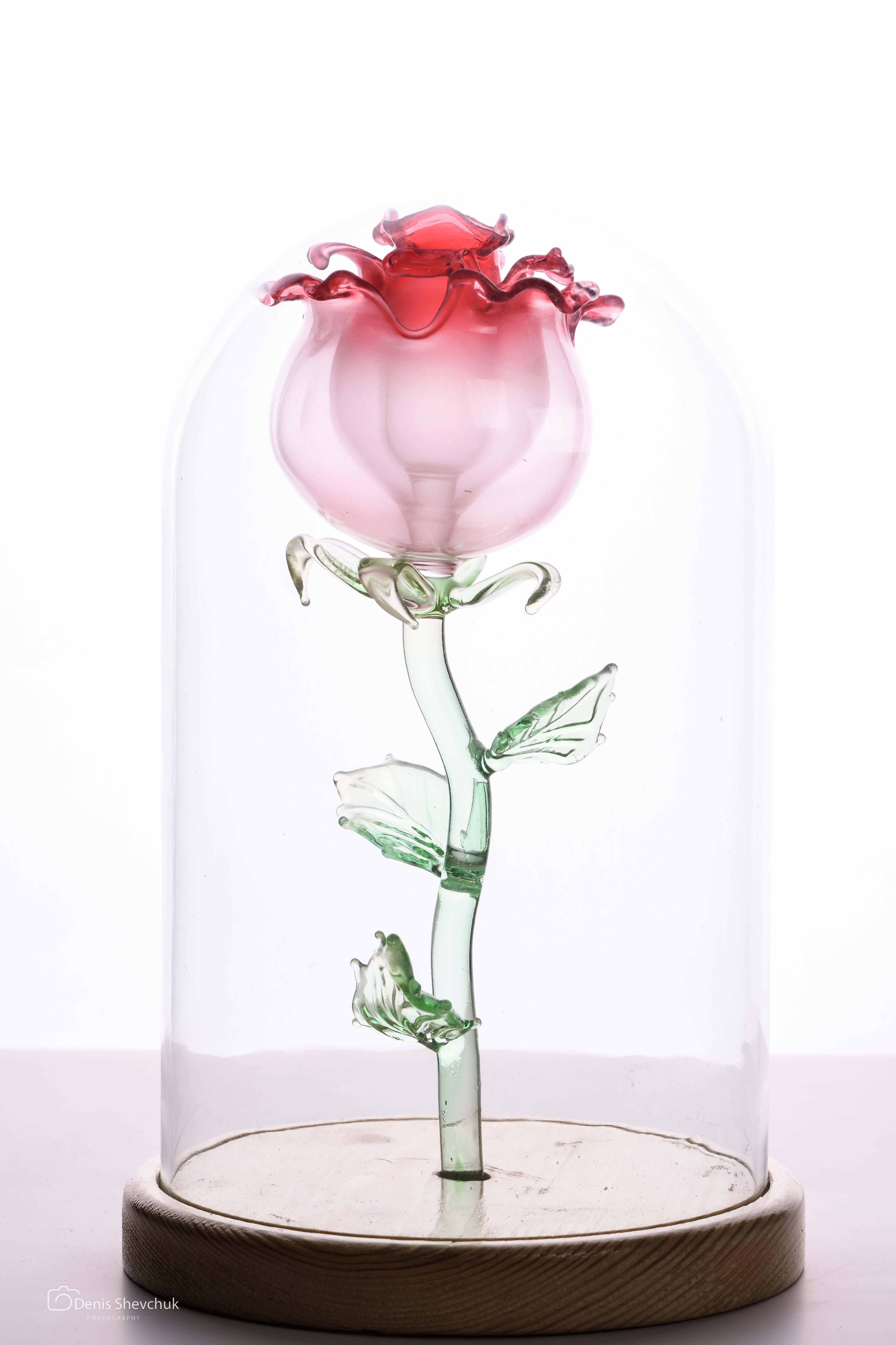 Сувенир «Вечная роза 4»