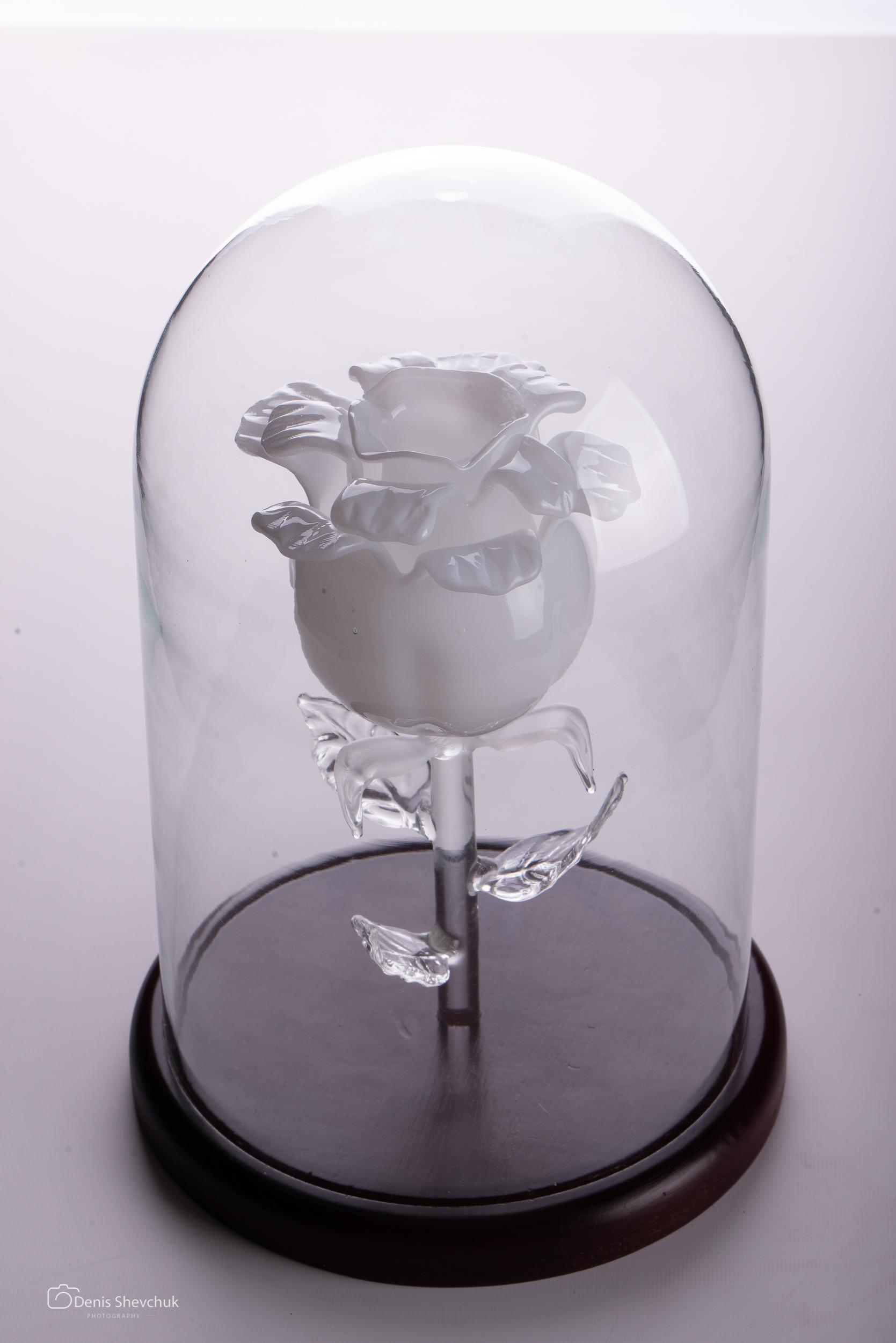 Сувенир «Вечная роза 7»